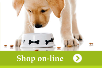 shop-online-abc-zoo